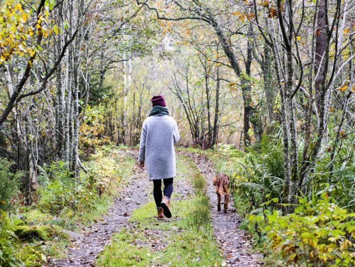 Tur med hund i skogen. Kynna på Tjøme